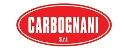 Carbognani